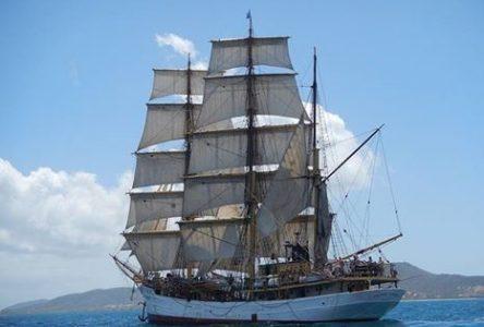 Esmeralda, Picton, Vahine, Spaniel et Regina se donnent rendez-vous au Port