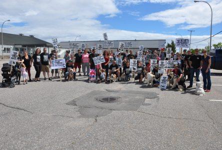 Une soixantaine de personnes manifestent pour les pitbulls