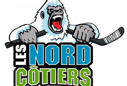 Hockey Québec exige un plan d'orientation structuré de la part du hockey régional