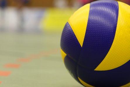 Le volleyball s'empare des gymnases