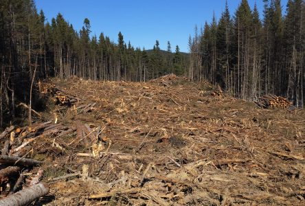 Des sentiers du lac des Rapides détruits par des travaux de dynamitage