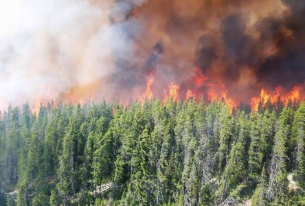 Feu de forêt: un panache de fumée recouvre Sept-Îles et Port-Cartier