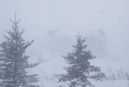 Un mois de janvier très enneigé
