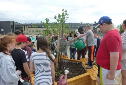 École St-Alexandre: Des arbres fruitiers inaugurés dans la cour de recréation