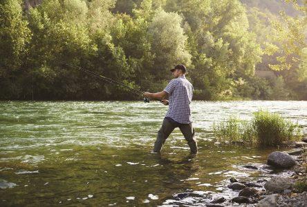 Saumon:Remise à l'eau obligatoire pour préserver la ressource