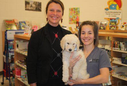 Zoothérapie: Une nouvelle ressource canine à l'école du Boisé