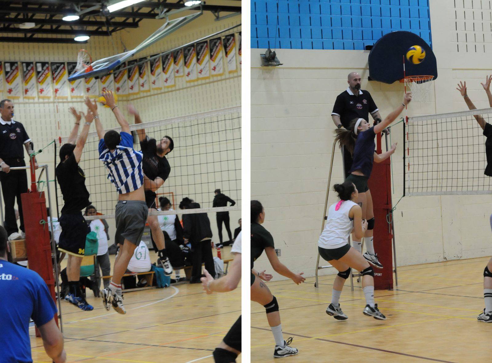 Tournoi de volleyball Orange Alouette : Sept-Îles, ça commence aujourd'hui!