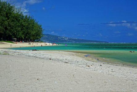 Les Aventuriers Voyageurs: «La Réunion, Île passion»