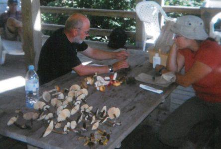 Rencontre de la FQGM:Plus de 120 mycologues se rassemblent à Sept-Îles
