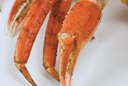 Crabe des neiges: Vers une certification internationale