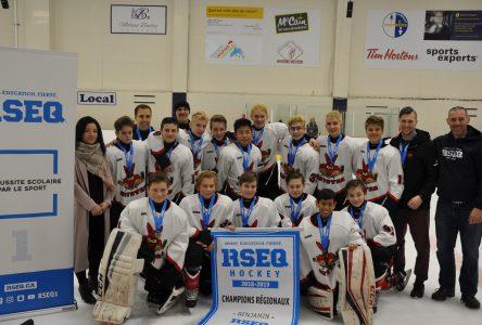 Les Coyotes et le Noir et Or se partagent les titres au régional de hockey du RSEQ