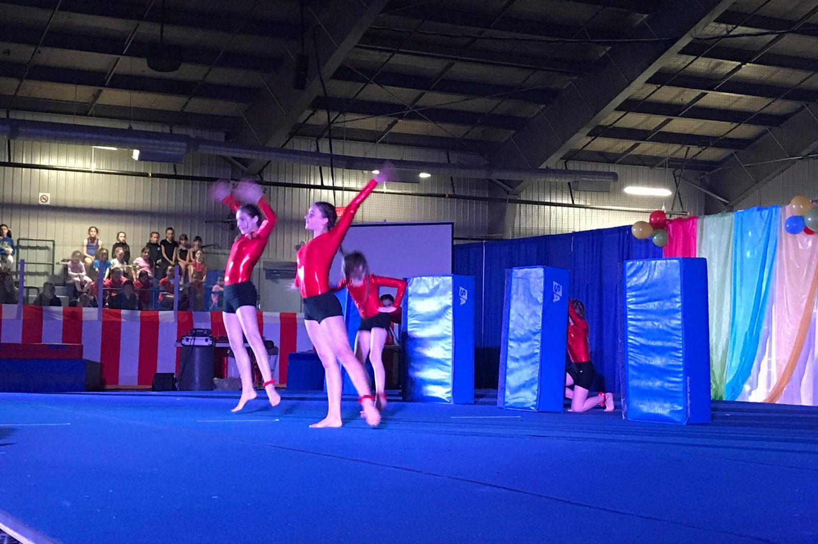 250 gymnastes clôturent leur saison en beauté