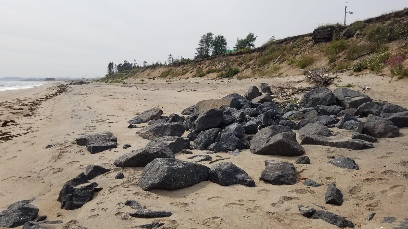 Restauration de l'habitat du capelan: Le Comité ZIP Côte-Nord tient une consultation exemplaire