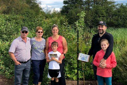 Un arbre planté aux Jardins de l'Anse en mémoire de Réjean Perron