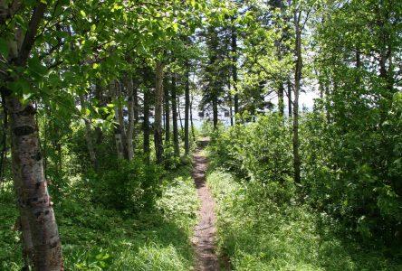 L'URLS et Tourisme Côte-Nord lancent un nouvel outil pour les adeptes de randonnée pédestre