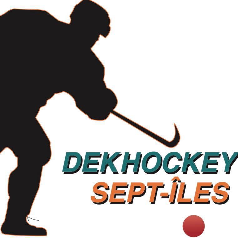 Journée d'initiation et d'informations sur le dekhockey le 1er décembre