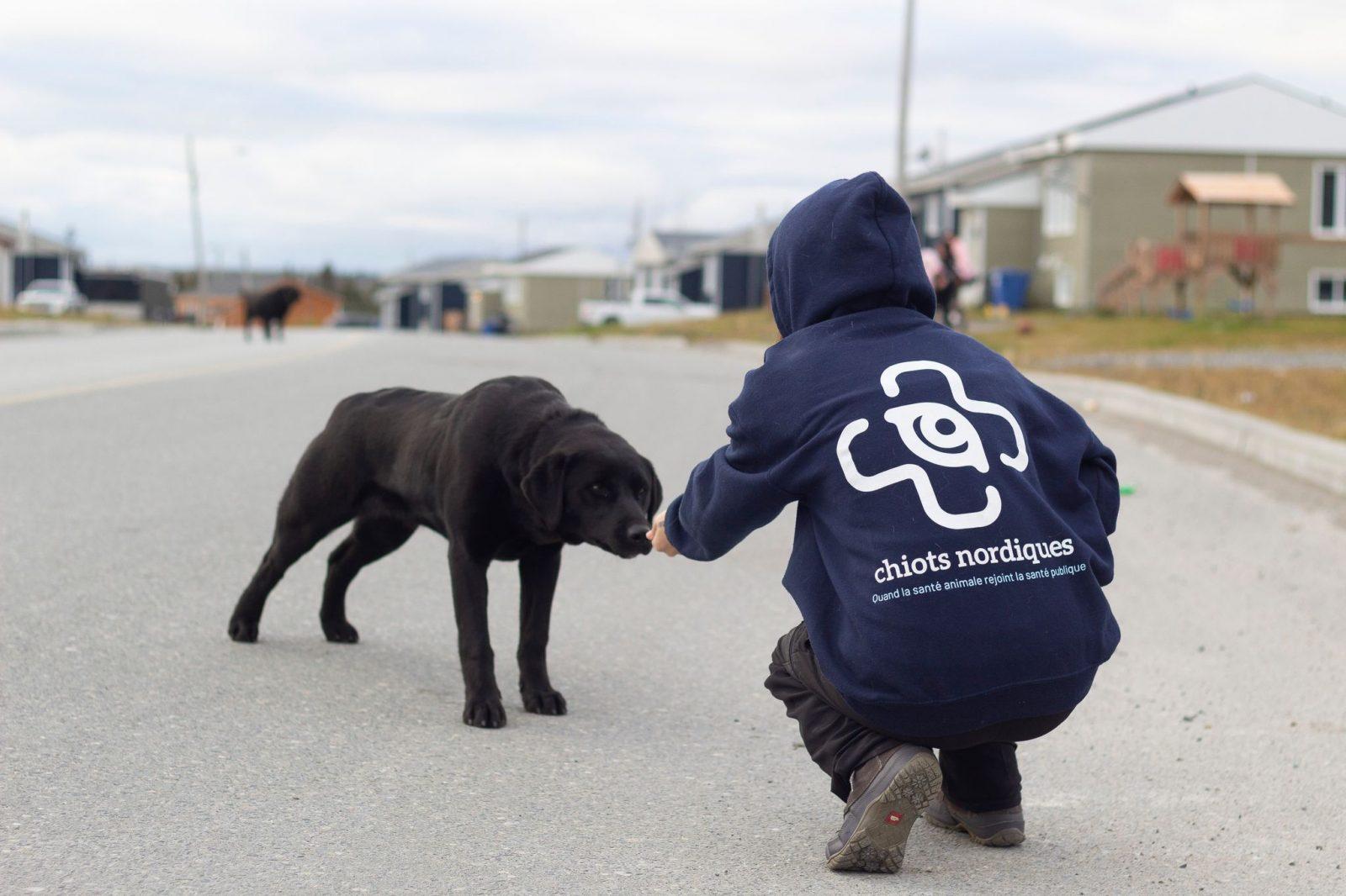 L'organisme Chiots Nordiques à l'honneur à Refuge animal
