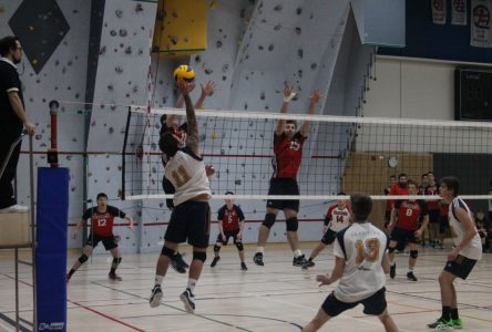 Volleyball collégial : les gars brisent la glace