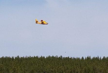 Feu de forêt au Lac Daigle : près de 77 hectares affectés