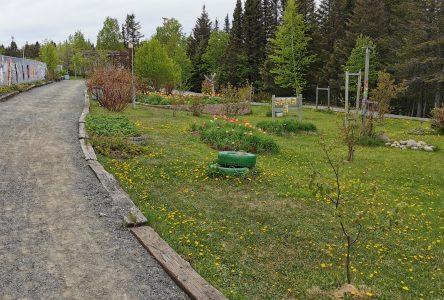 Une aide financière pour le jardin communautaire ruisseau Bois-joli