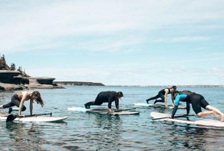 L'entreprise Les vagues surfe sur la planche