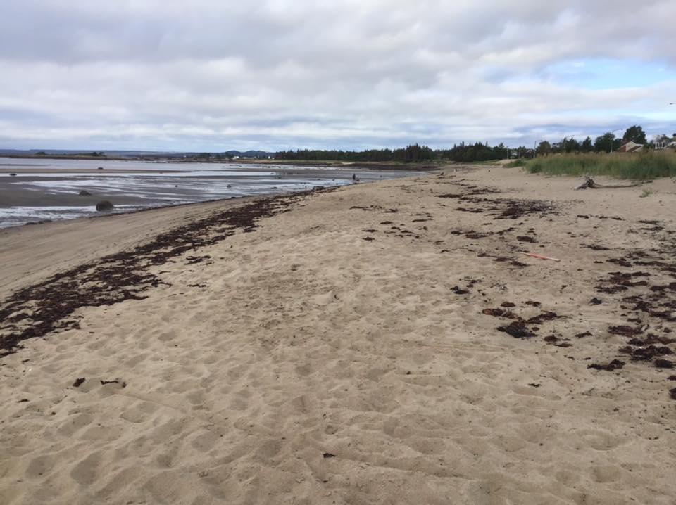 Le ministère de la Sécurité publique privilégie la recharge de la plage Rochelois