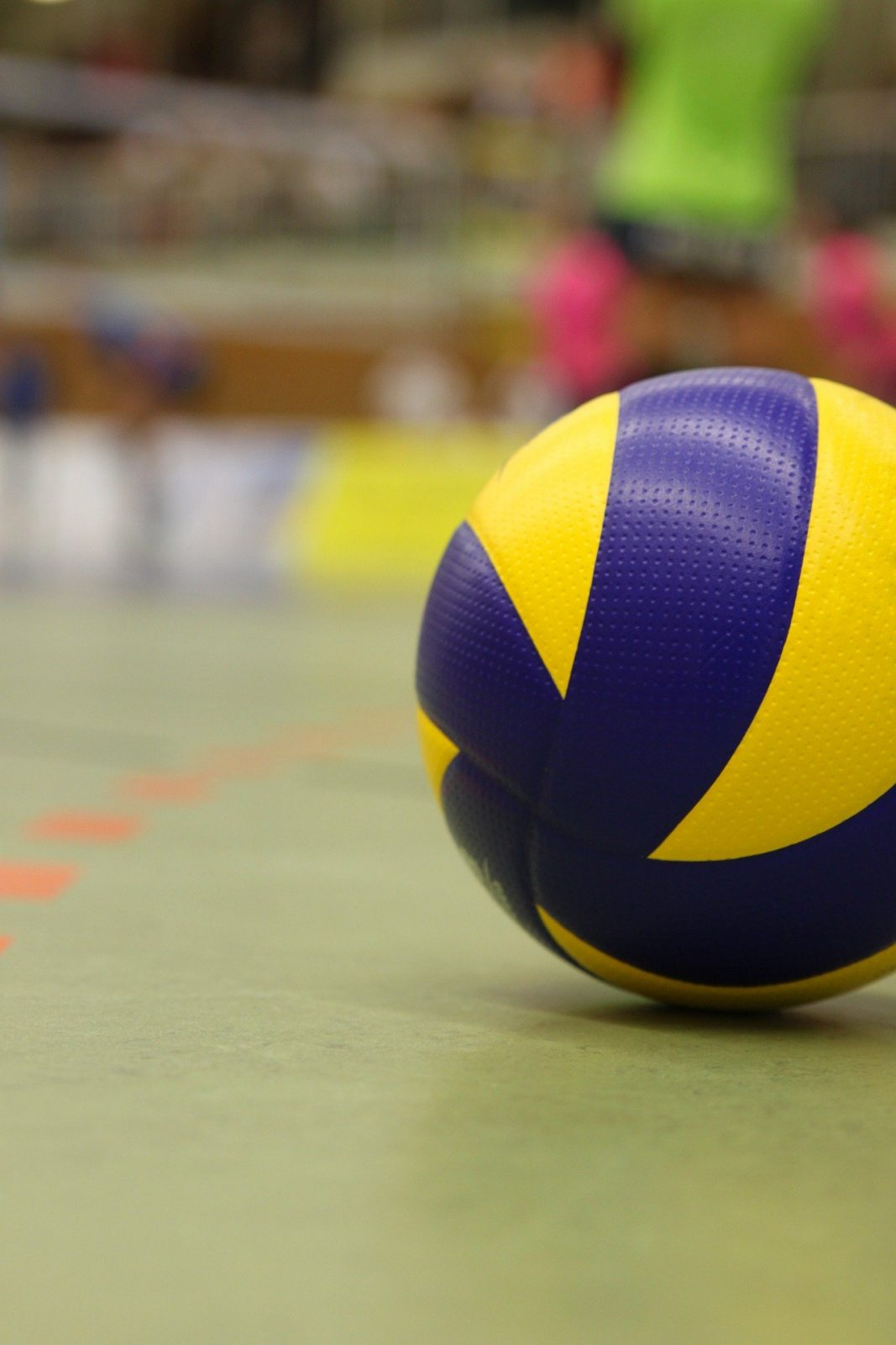 Association de volleyball de Sept-Îles : la saison 2020-2021 se prépare