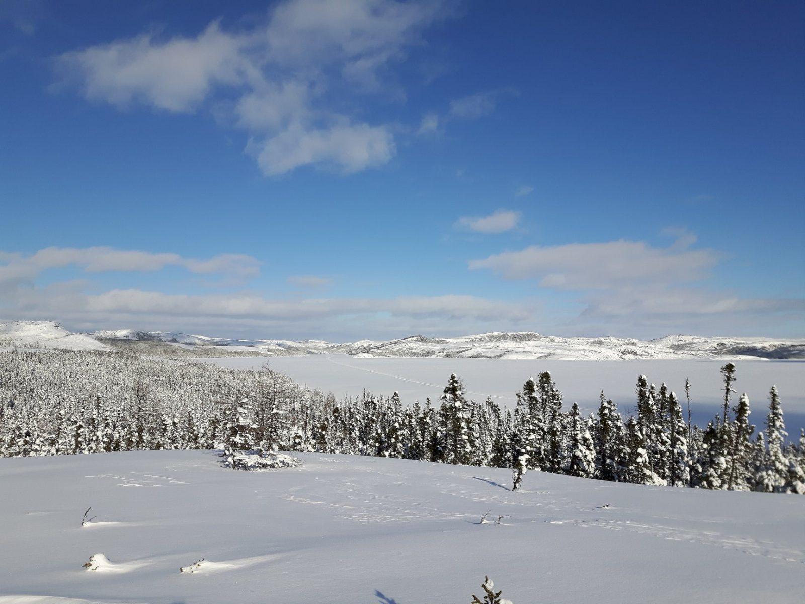 Création d'un fonds pour la mise en valeur de la faune nordique