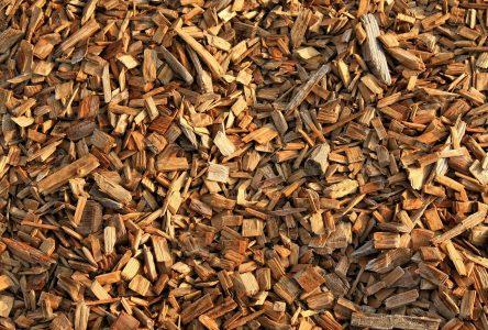 Un projet pour favoriser l'utilisation de la biomasse forestière résiduelle